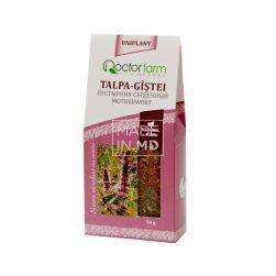 Motherwort Tea