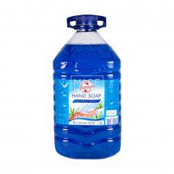 Antibacterial Liquid Soap, 5 l