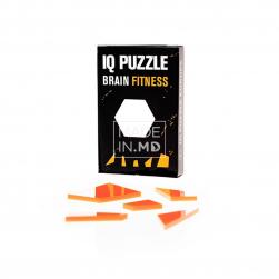 IQ Puzzle «Шестиугольник»