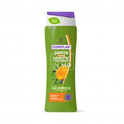 Șampon regenerator...